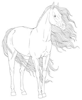 馬のぬりえ