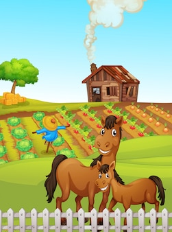 Horse at the farmland illustration