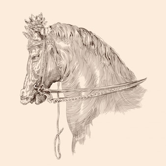 Horse head drawing with mane in vintage style