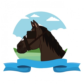 Horse head with eye cap cartoon