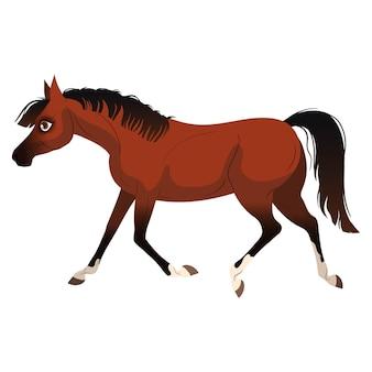 말 달리기