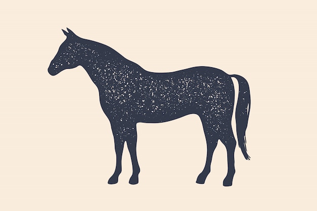 말, 종마. 농장 동물의 개념
