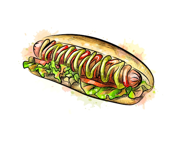 Hot dog from a splash of watercolor, hand drawn sketch.  illustration of paints
