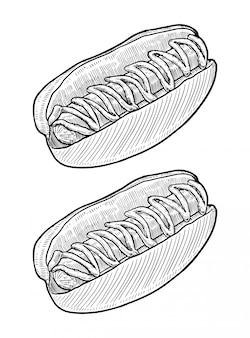 Hot dog hand drawn
