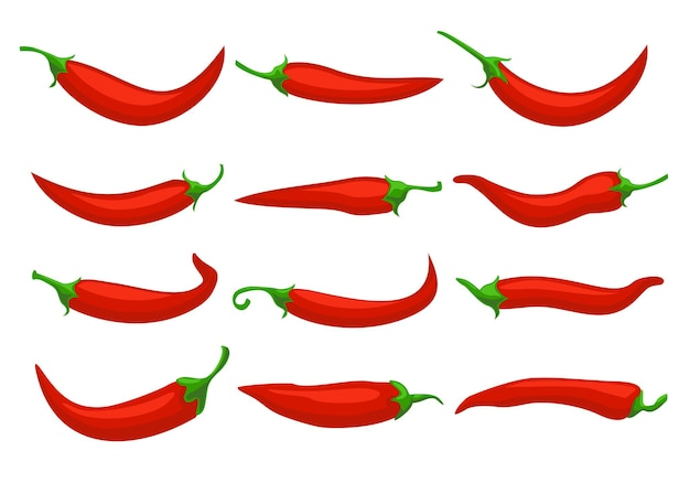 Hot red chili peppers closeup chilly pepper cartoon mexican chilli or chillies  peppers icons