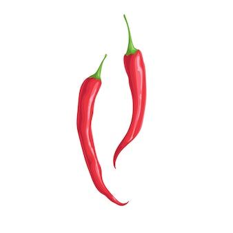 Острый красный перец чили. плоский мультяшный стиль дизайна.