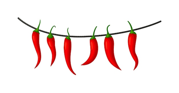 Hot red chilly pepper on rope isolated on white background