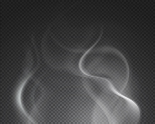 뜨거운 증기. 격리 된 안개 연기 구름. 투명 배경에 레코딩 음료 음식 수증기