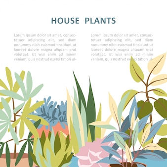 House plant background template
