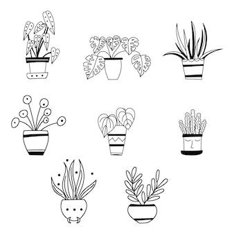 Клипарт комнатных растений. векторная иллюстрация.