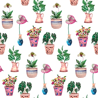 House plant in pots watercolour illustration