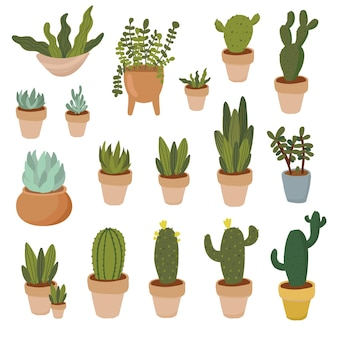 집 식물 손으로 그린 클립 아트 세트 냄비에 실내 식물 즙이 많은 알로에 베라 선인장