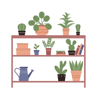 가정 자연 정원의 나무 선반에 있는 세라믹 냄비 책에 있는 집 식물