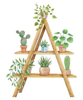 선반에 냄비에 집 식물
