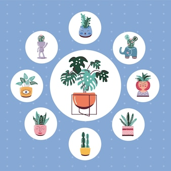 House plants in pots, scandinavian style icons