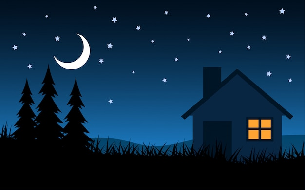 House in starry night landscape