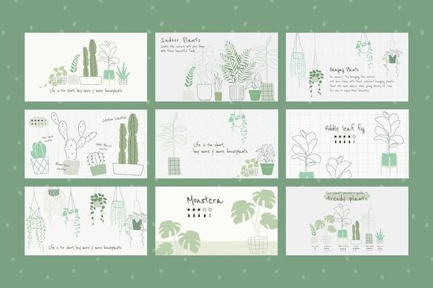 Insieme di vettore del modello botanico di pianta d'appartamento per banner blog