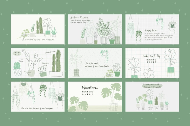 Набор векторных ботанических шаблонов комнатных растений для баннера блога