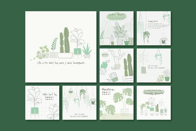 Insieme di vettore del modello botanico di pianta d'appartamento per i social media