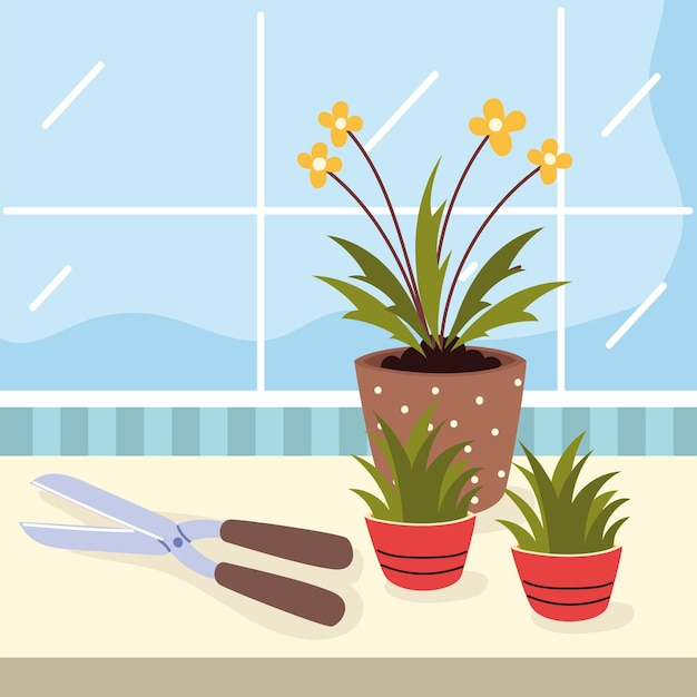 관엽식물 관리 및 도구