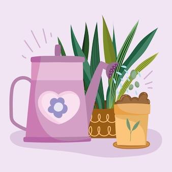 観葉植物ケア散水