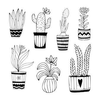 Houseplant collection in hand drawn. doodle florals in pots.