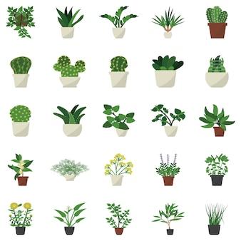 Houseplant decor flat icons