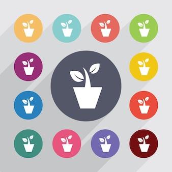 観葉植物、フラットアイコンを設定します。丸いカラフルなボタン。ベクター