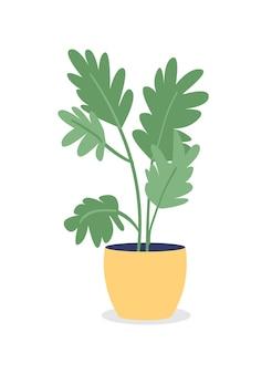 寝室のセミフラットカラーベクトルオブジェクトの観葉植物。家庭菜園。空気清浄。グラフィックデザインとアニメーションのための屋内孤立したモダンな漫画スタイルのイラストを育てる植物