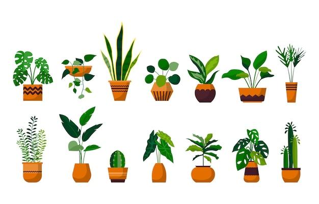 관엽 식물 녹색 장식 식물 정원 식물 세트