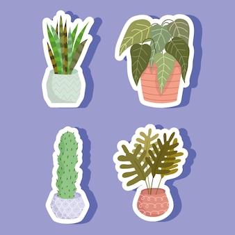 Наклейка комнатное растение в горшке