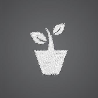 暗い背景で隔離の観葉植物スケッチロゴ落書きアイコン