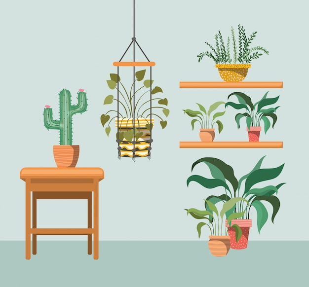 Houseplants in macrame hangers and wooden chair