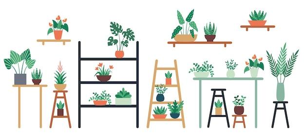 Комнатные растения, стоящие на полке, стуле и столе в керамических горшках. украшение интерьера дома и офиса с разными зелеными листьями и цветами разного размера. листва векторные иллюстрации