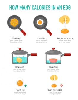 How many calories in an egg infographic