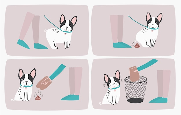 비닐봉지를 이용하여 개똥을 줍고 쓰레기통에 버리는 방법, 단계별 설명서 또는 지침. 매일 산책 중 애완 동물 후 청소 방법. 귀여운 만화 다채로운 벡터 일러스트 레이 션.