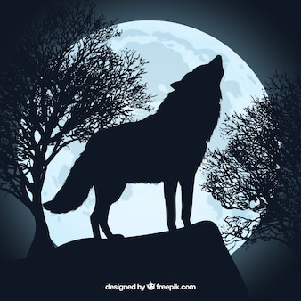Howling wolf silhouette and full moon