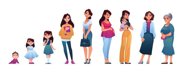 Человеческий возраст женщина растет этапы жизненного цикла