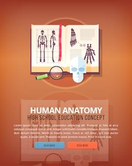 인체 해부학. 교육 및 과학 수직 레이아웃 개념. 현대적인 스타일.