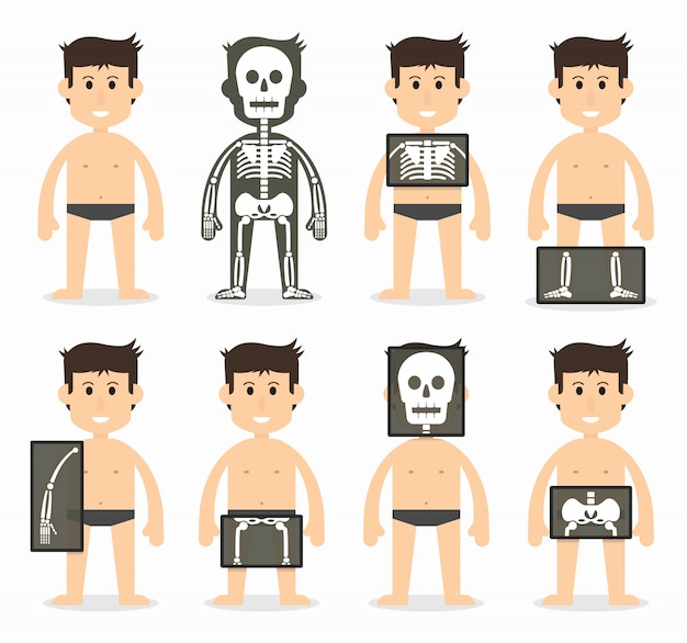 Человеческое и общее сканирование костей