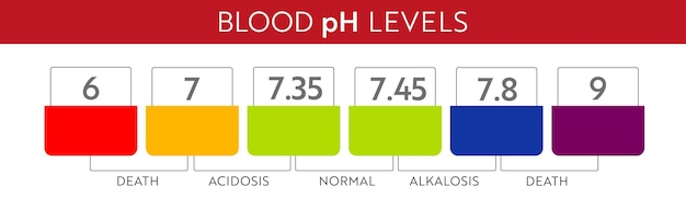 Диапазон ph в крови человека. диаграмма и шкала медицинской иллюстрации. кислотная, нормальная, акалиновая диаграмма.