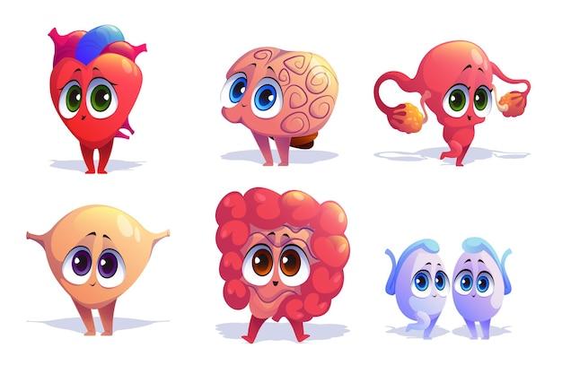 Insieme isolato di personaggi dei cartoni animati di organi del corpo umano