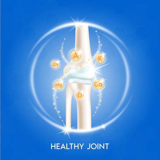 Анатомия костей человека. концепция рентгеновского сканирования скелета и витаминная терапия.