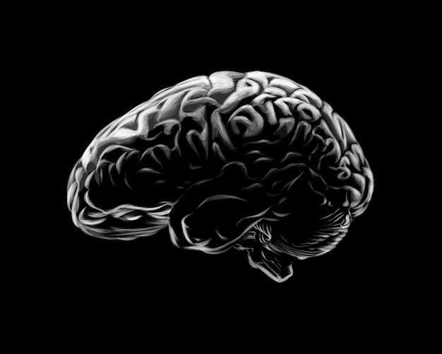 Human brain on a black background.  illustration