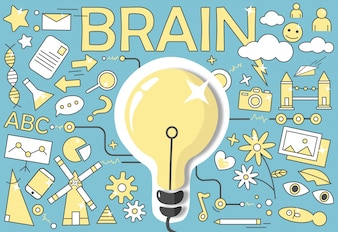 Human brain diagram