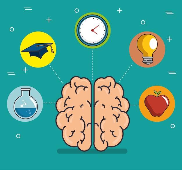 Human brain education thinking concept
