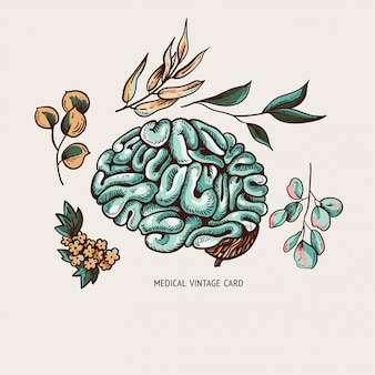 Human brain illustration with leaves and flowers,