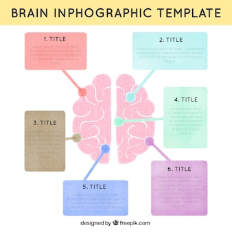 Human brain infographic template in pastel colors