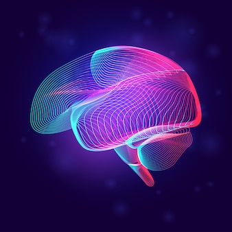 Медицинская структура человеческого мозга. наброски анатомии органа части тела в стиле 3d линии на неоновом абстрактном фоне
