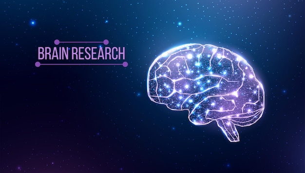 Human brain research. wireframe low poly style. concept for medical, brain cancer, neural network. abstract modern 3d vector illustration on dark blue background.